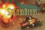 SteamBirds Survival Game