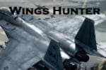 Wings Hunter Game – Airplane Shooting Games